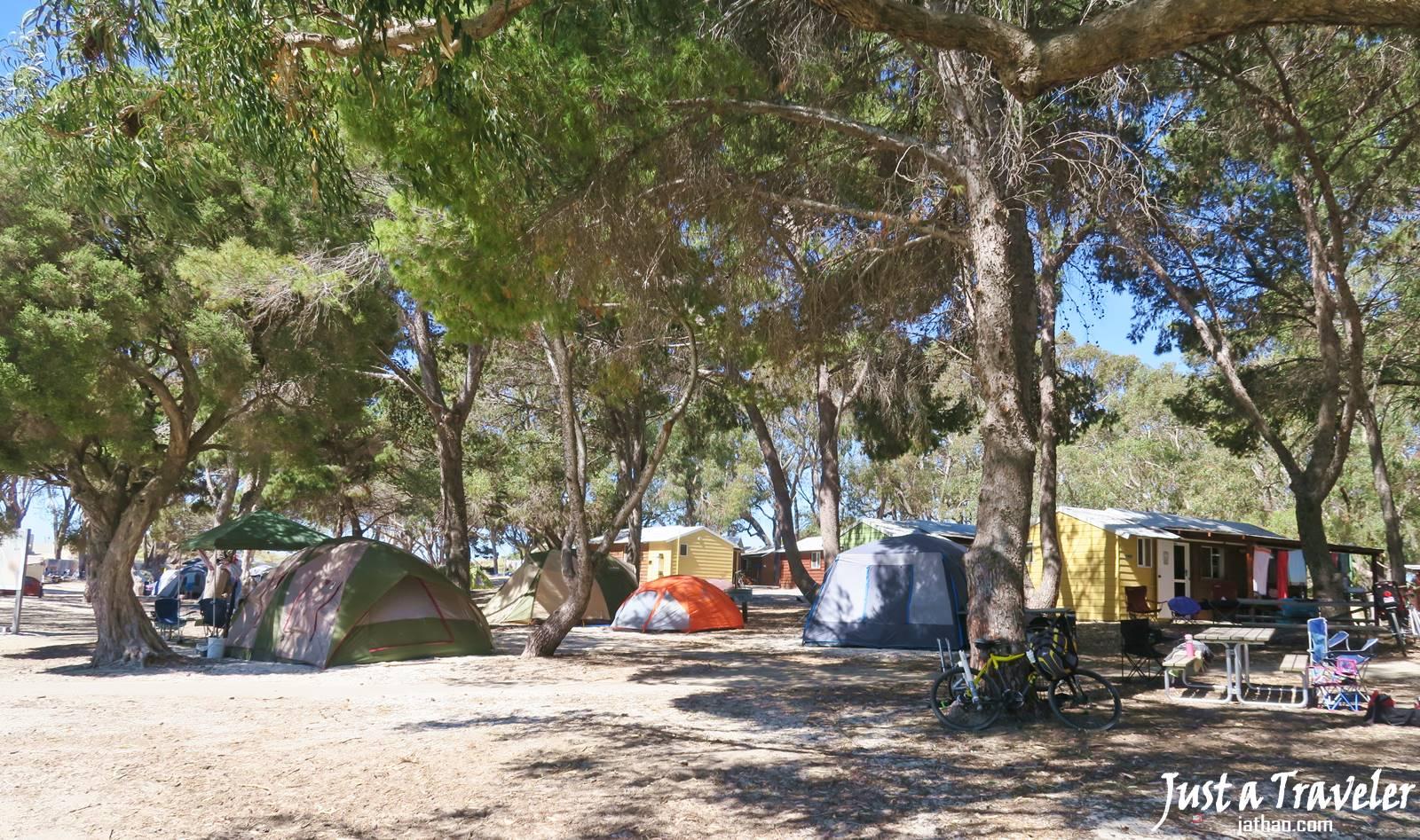 澳洲-西澳-伯斯-景點-羅特尼斯島-Rottnest Island-住宿-露營-飯店-旅館-酒店-推薦-自由行-交通-旅遊-遊記-攻略-行程-一日遊-二日遊-必玩-必遊-Perth