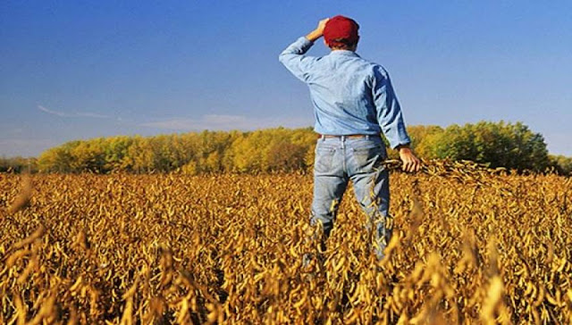 Έρχονται αυξήσεις στις εισφορές των αγροτών από 50% έως 130%!