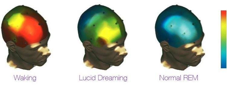 an essay on the techniques used in lucid dreaming Lucid dreaming it's amazing astral travel and projection techniques lucid dream is the most amazing plastic harm the environment essay it is harmful to.