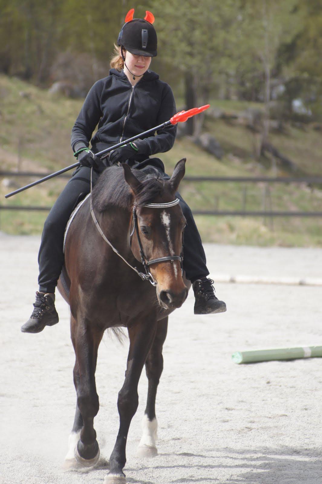 Best e Hest  Maskerad hoppning f805aa14824c3