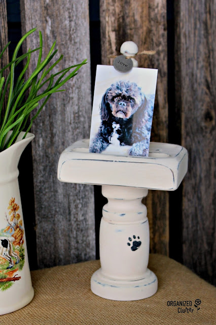 Vintage Playing Card Holder to Pet Photo Display #upcycle #repurpose #thriftshopmakeover #stencil #anniesloanchalkpaint