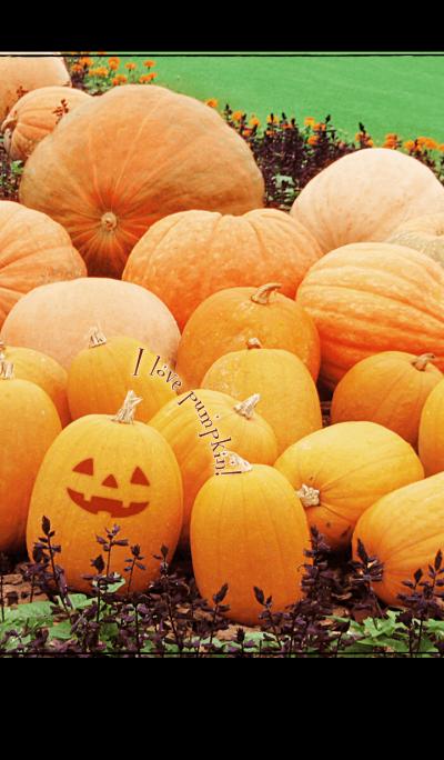 I love pumpkin!
