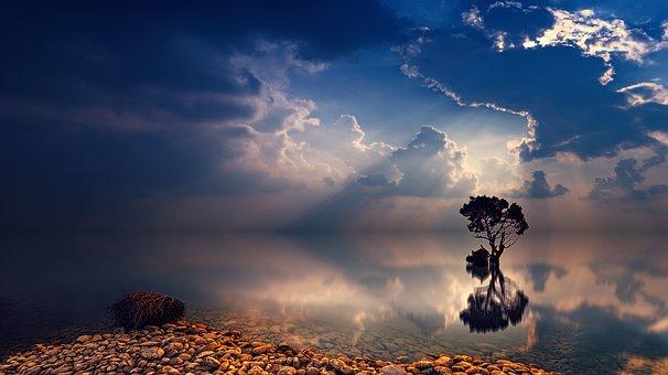 Piedras en la orilla de un lago que sobresale un árbol en la oscuridad. Existe el alma