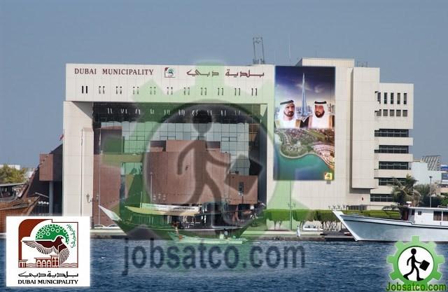 وظائف-بلدية-دبي