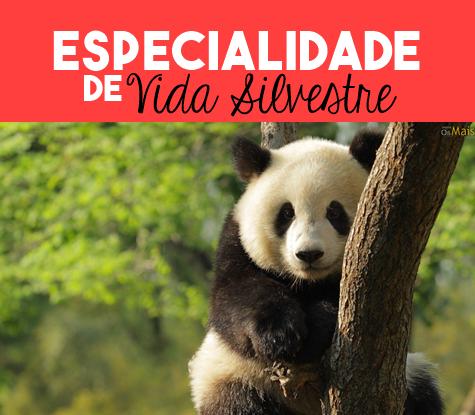 Especialidade-de-Vida-Silvestre-Respondida