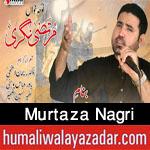 http://www.humaliwalayazadar.com/2016/08/murtaza-nagri-nohay-2008-to-2017.html