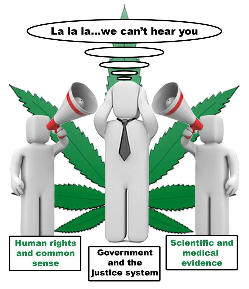 marihuana y esclerosisi