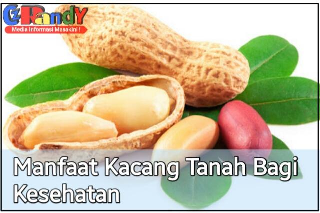 Manfaat Kacang Tanah Bagi Kesehatan Tubuh