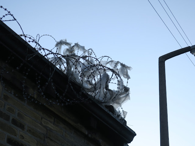 Plastic tangled round razor wire on high wall. Lampost and telegraph wires.