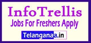 InfoTrellis Recruitment 2017 Jobs For Freshers Apply