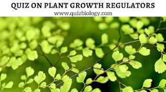 Try now - Plant Growth Regulators Quiz