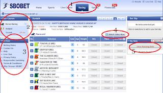 Tokojudi.com Panduan Judi Pacuan Kuda Online