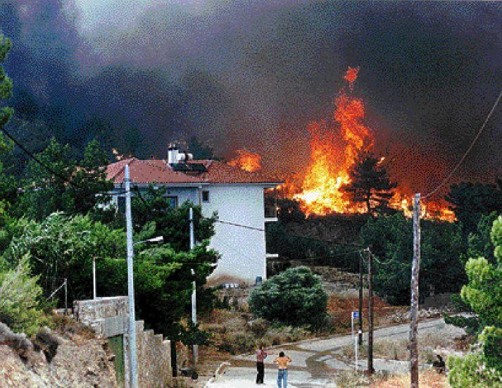 Αποτέλεσμα εικόνας για πυρκαγιά στο Νεοχωρόπουλο Ιωαννίνων