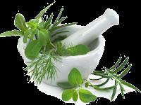 Jual Obat Tradisional Penyakit Kencing Nanah