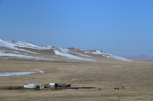 Steppe landscapes, central Mongolia