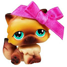Littlest Pet Shop Singles Persian (#22) Pet