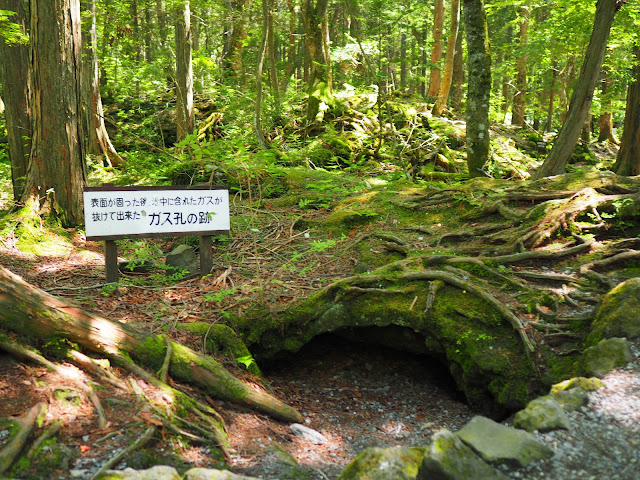 富士パノラマライン 富岳風穴 青木ヶ原樹海