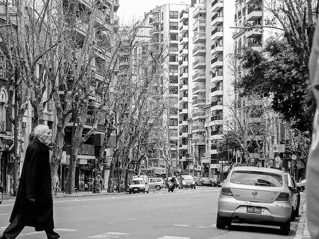 Hombre con sobretodo negro cruzando la avenida ,árboles y condominios al fondo.