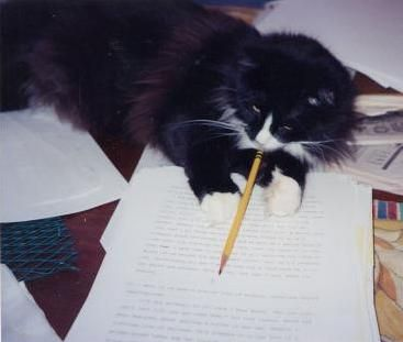 Jungle Red Writers: Clea Simon--How Did You Meet Your Pet