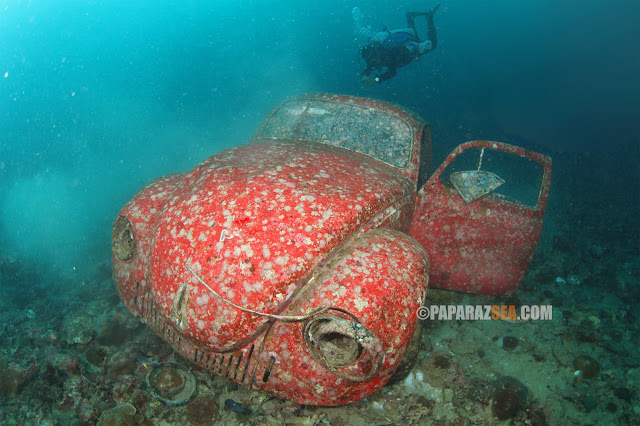 Jun V Lao, PaparazSea, Underwater Photography, Scuba Diving