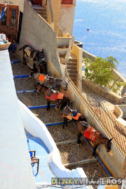 Parada de burros en Santorini