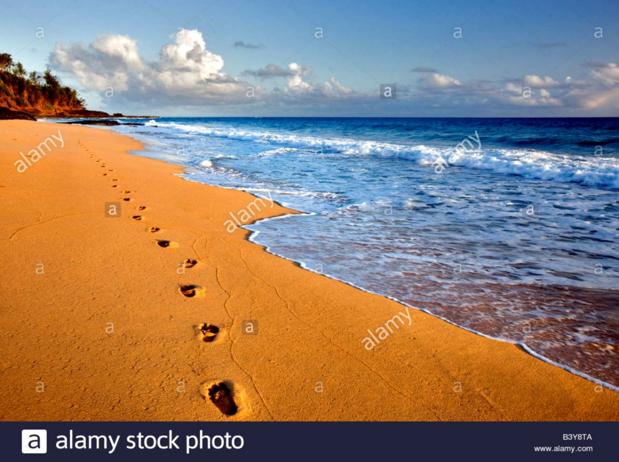 beach footprints | best wallpapers hd collection