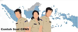 Mau Lulus CPNS? Pelajari Soal-Soal CPNS