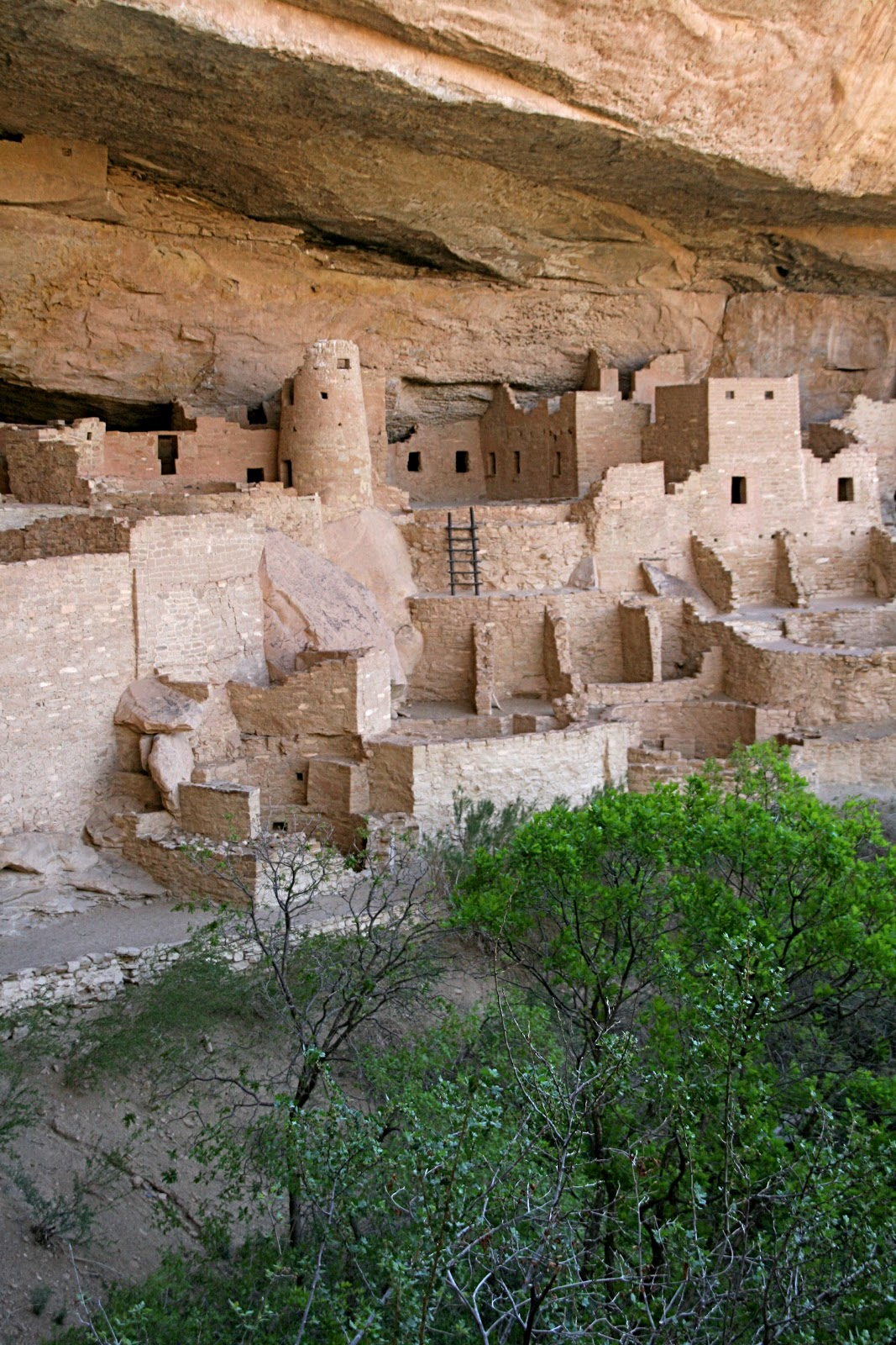 Mesa Verde National Park Finding The Extraordinary In The Ordinary Colorado Mesa