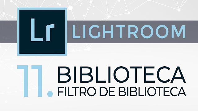 Curso de Lightroom - 11. Filtro de biblioteca