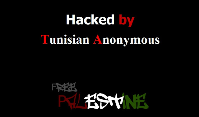 50 government website hacked by Tn-V!Rus and The 077