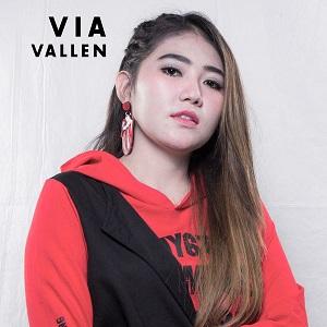 [Full Album] The Best Via Vallen, Vol 2 (2018) MP3