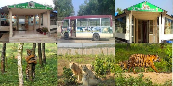 Safari Park Tour in Bangladesh
