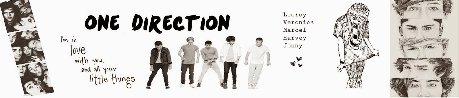 Bio One Direction 1D