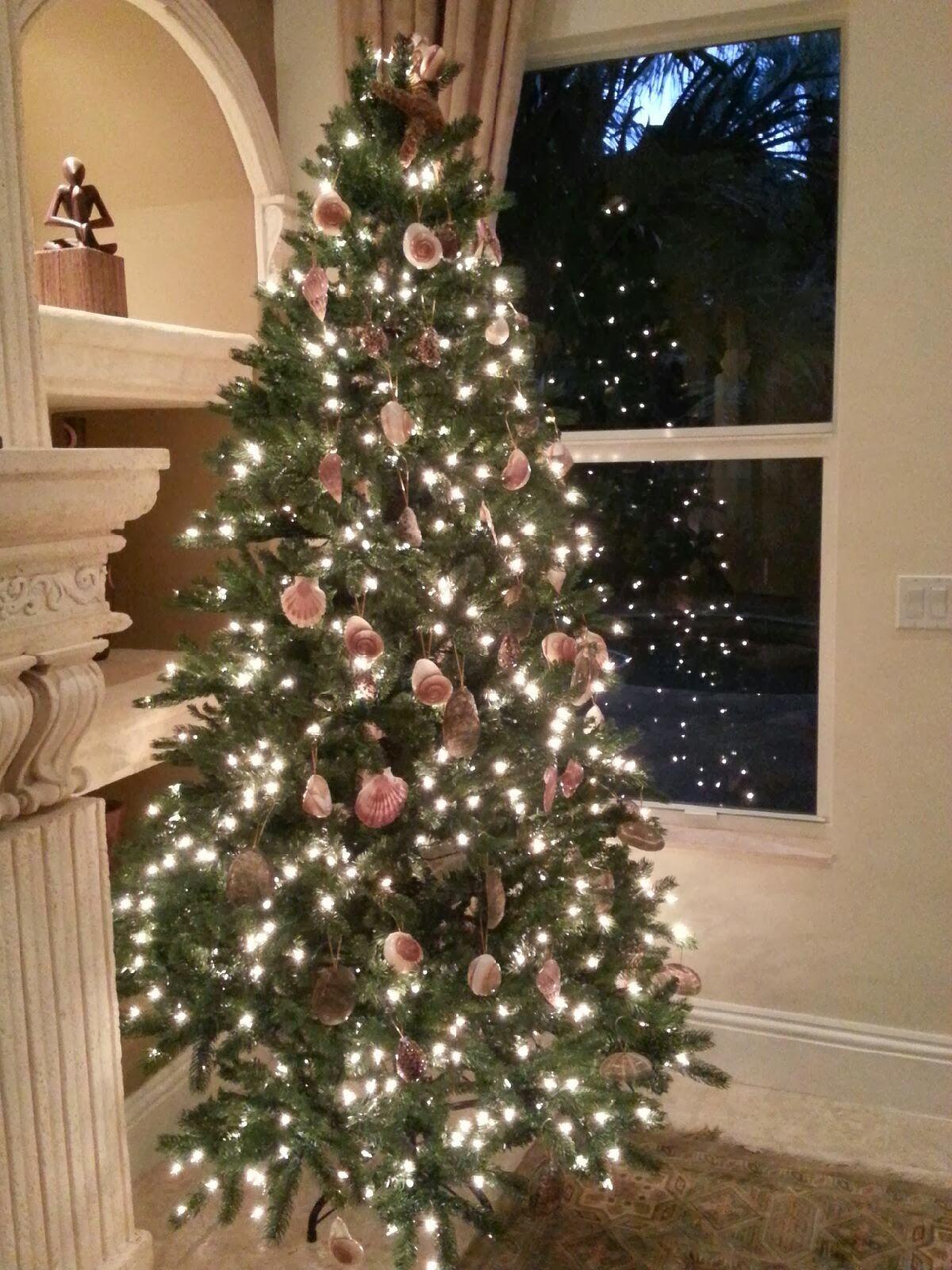 Where Is Jupiter Florida >> Nautical by Nature: Seashell Christmas Tree