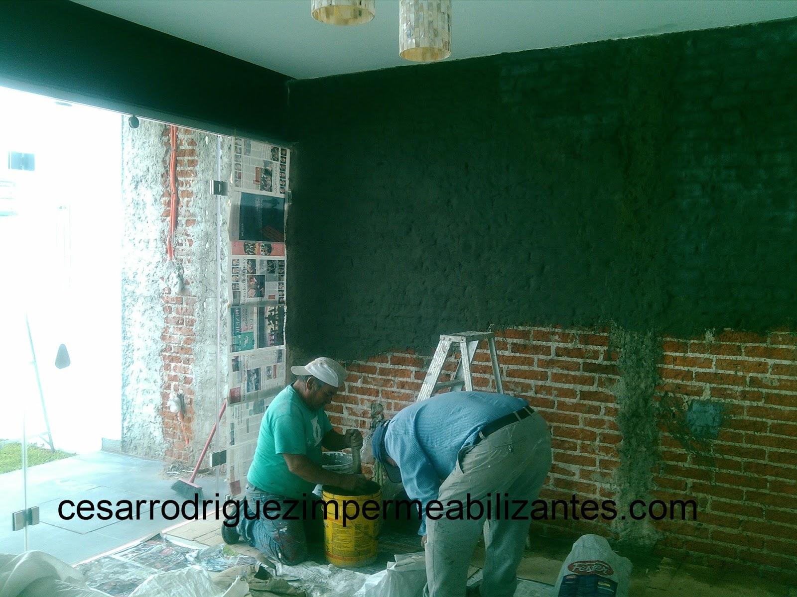 Soluciones inmediatas en impermeabilizaci n - Impermeabilizante para paredes ...