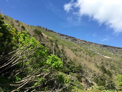 硫黄岳の森林限界あたり