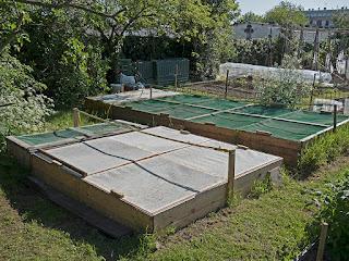 Photo 2- parcs extérieurs d'élevage d'escargots