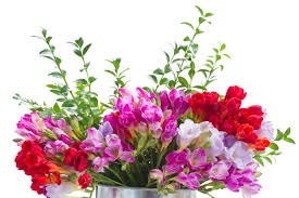 Top 7 flowers to gift your boss