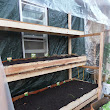 Off the Grid in Minneapolis: Winter Greenhouse 2015
