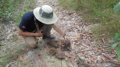 """Hipam """" Himpunan Penggiat Alam""""  Divisi Konservasi Gajah Menghapus Jerat Pemburu Liar"""
