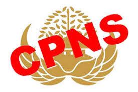 Segera Diumumkan, Ini Waktu Seleksi CPNS 2018