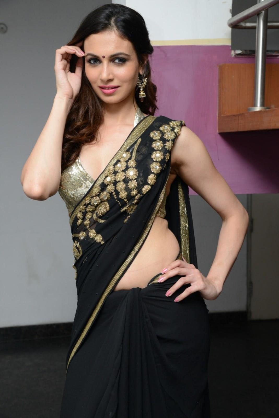 Simran Kaur Hot Cleavage Show Photos In Saree - Hot Blog -1640