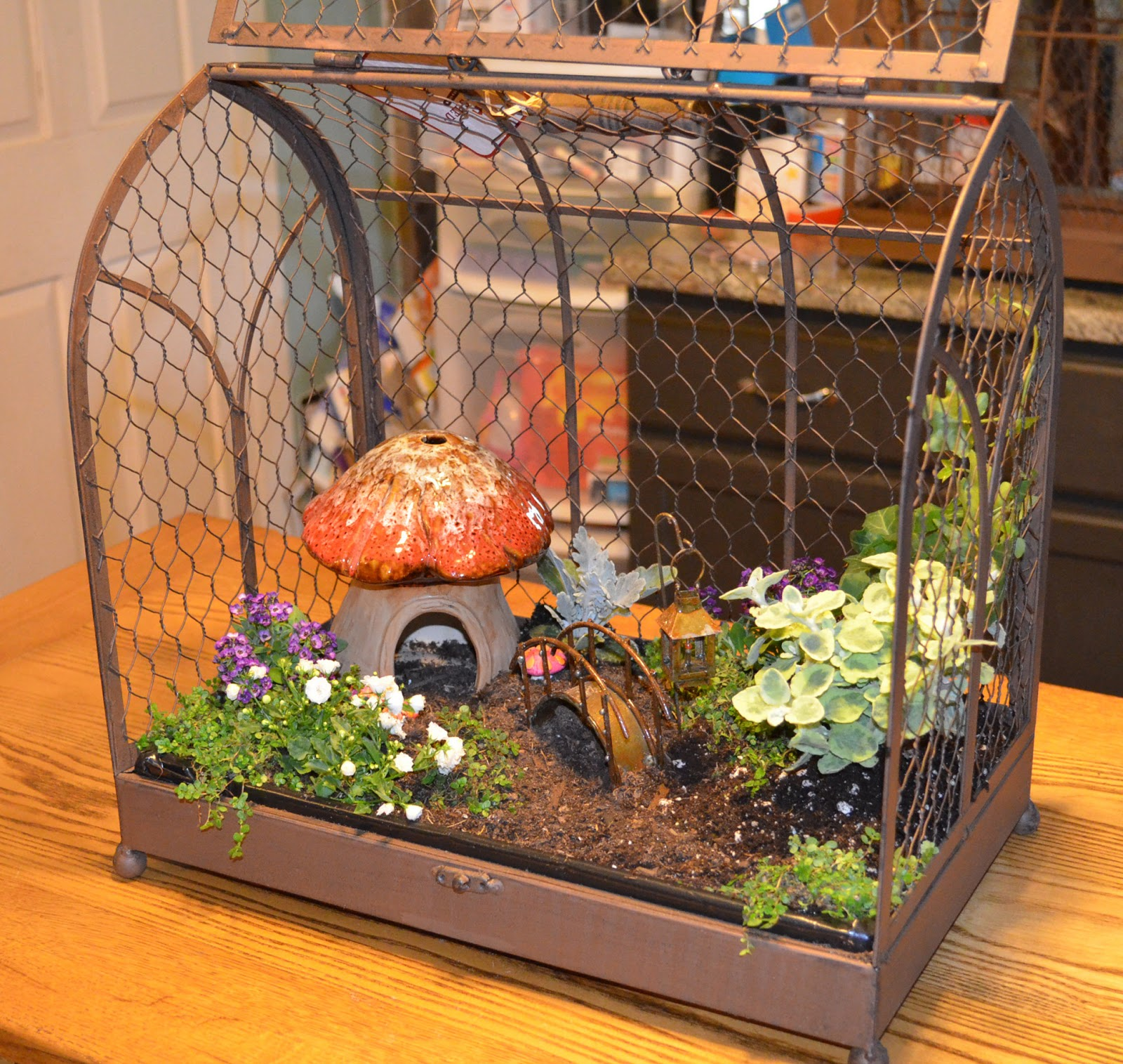 Edible Landscaping And Fairy Gardens: Stamp-n-Design: Indoor Fairy Garden