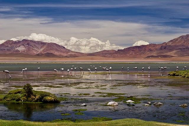 Viaja a la patagonia chilena en tu luna de miel - Foto: www.3.bp.blogspot.com
