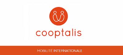 Société COOPTALIS basée en France recrute des concepteurs-développeurs Front-End (H/F)