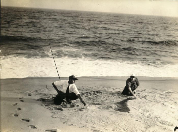 The Nantucket Sea Serpent Hoax Of 1937