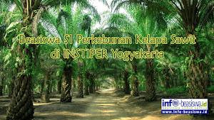 Beasiswa Sarjana S1 Perkebunan Kelapa Sawit