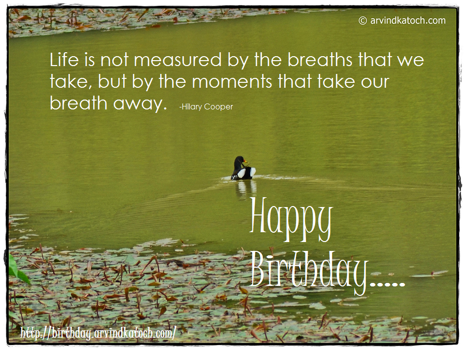 Happy Birthday, Birthday, Card, Life, Breaths,