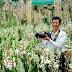 Top 10 vườn lan nổi tiếng nhất, đẹp nhất Việt Nam