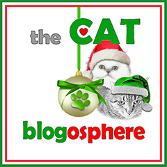 Cat Blogosphere Managing Editor